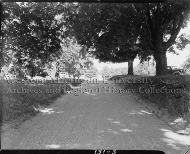 Country road and oak trees, Bloomingdale Accident Case