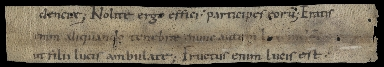 Cutting from a Carolingian Liturgical Manuscript