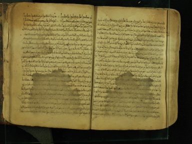 Manuscript in Arabic, open to ff. 198v-199r