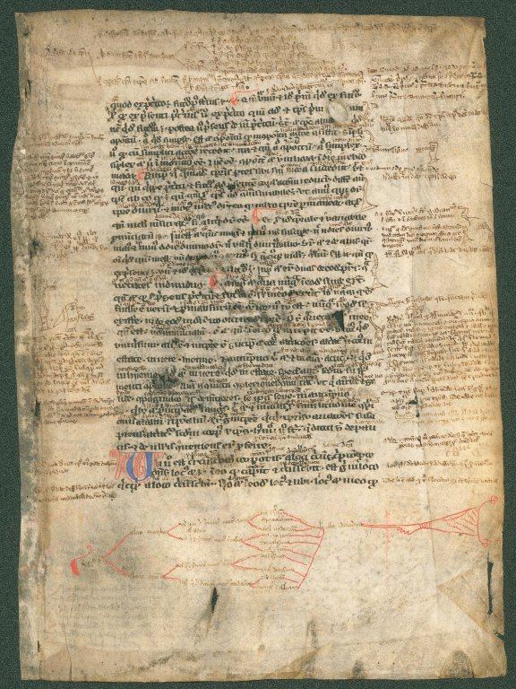 MS 148, recto