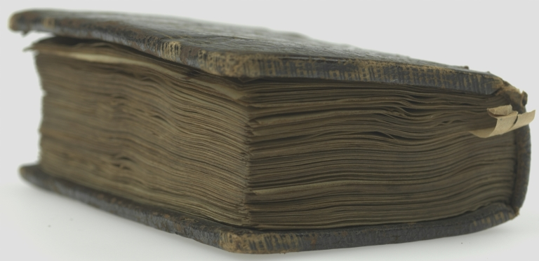 Book of hours : use in Rome, fore edge