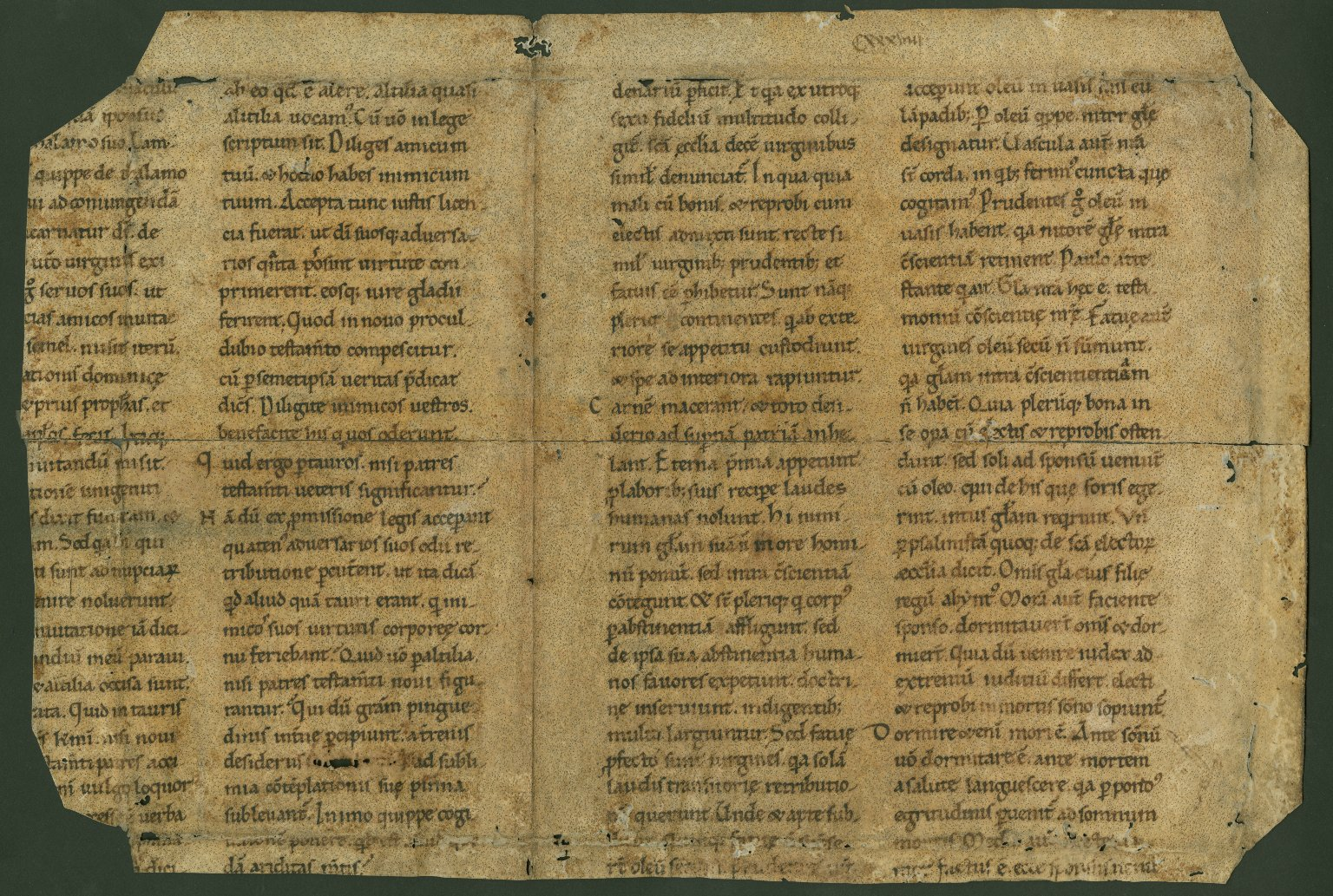 MS 127, recto
