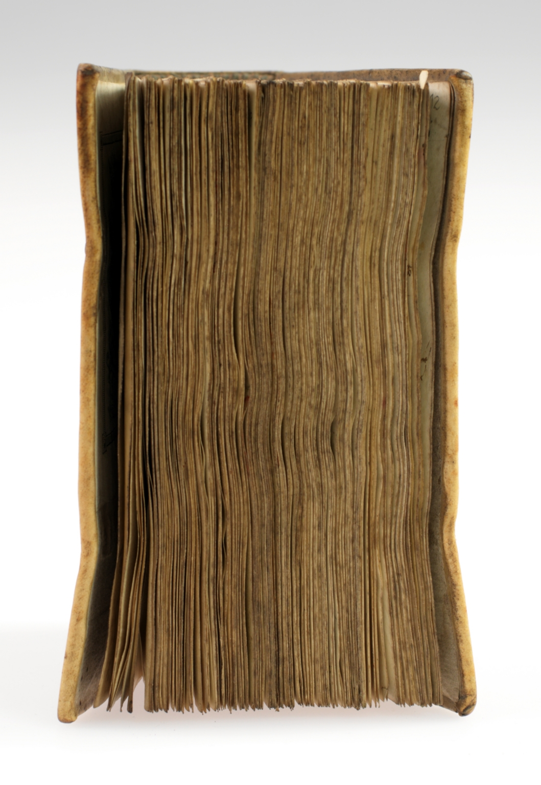 Miscellany of sermons by Caesarius of Arles, Eusebius Gallicanus, Eucherius of Lyon, Faustus of Riez, Augustine, Hugh of St. Victor, Pope Benedict XII, and Pope Urban V, fore edge